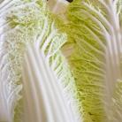 Рецепт Голубцы с пекинской капустой для лентяев