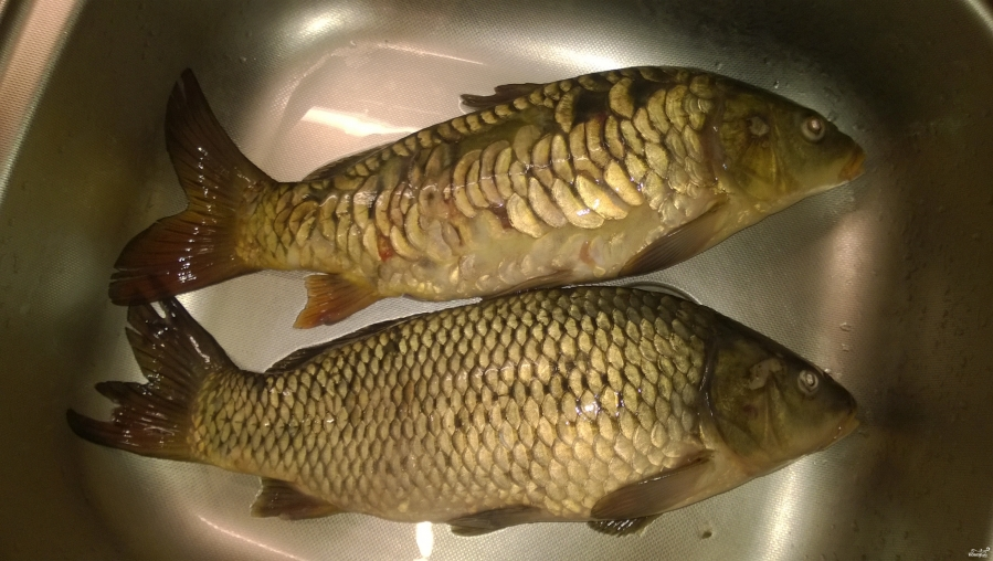 Рыба со сметаной - фото шаг 1