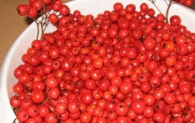 Рецепт Варенье из лесной рябины