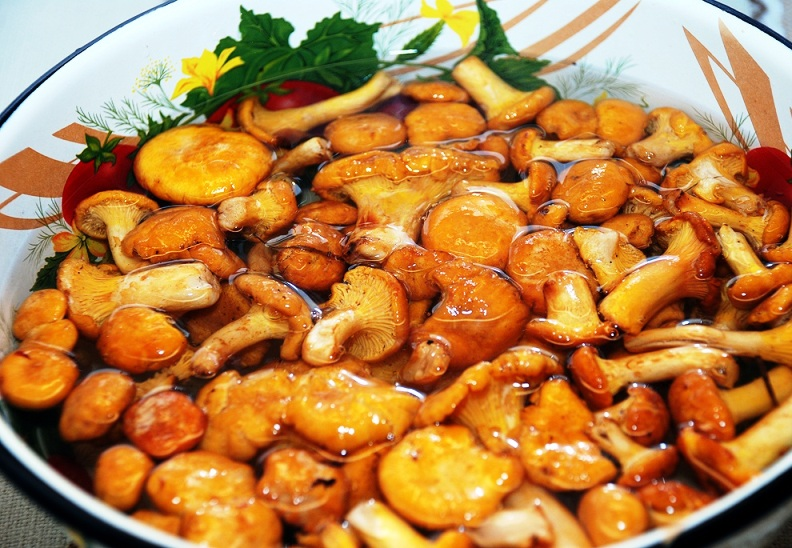 Суп из свежих лисичек - фото шаг 2