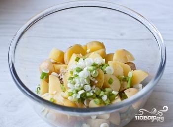 салат из картофеля и яиц фото рецепт
