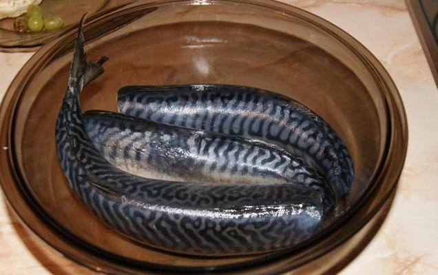 Скумбрия соленая в домашних условиях