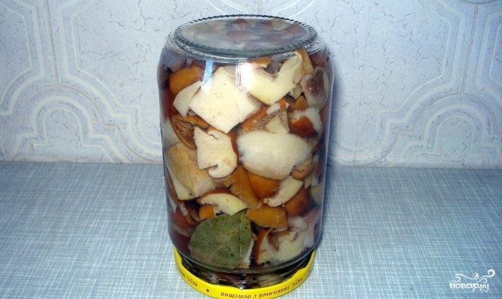 Маринованные маслята рецепт без стерилизации с фото