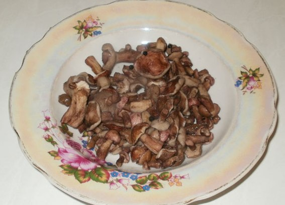 Биточки по-селянски с грибами - фото шаг 6