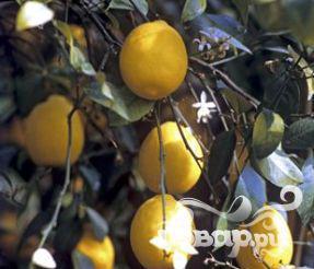 Рецепт Лимонно-мятный квас