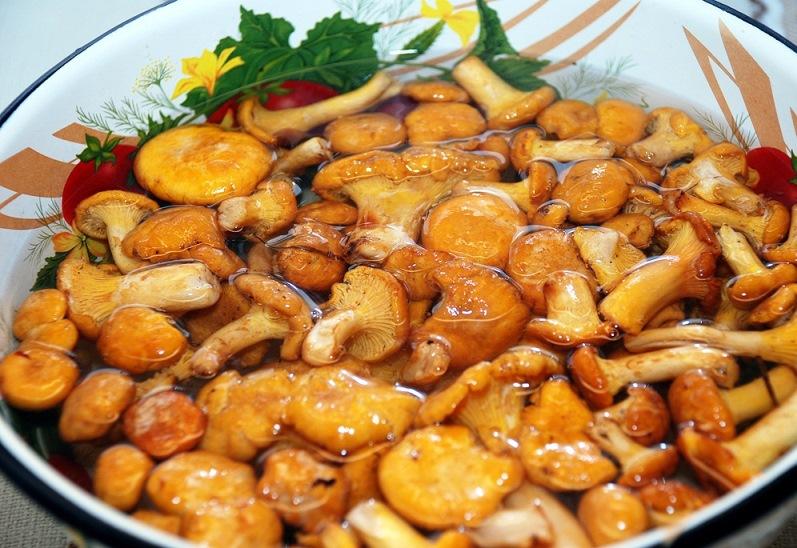 Суп из грибов лисичек   - фото шаг 3