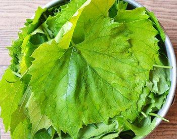 Рецепт Маринованные виноградные листья для долмы