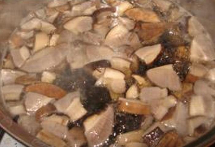 Суп грибы подберезовики