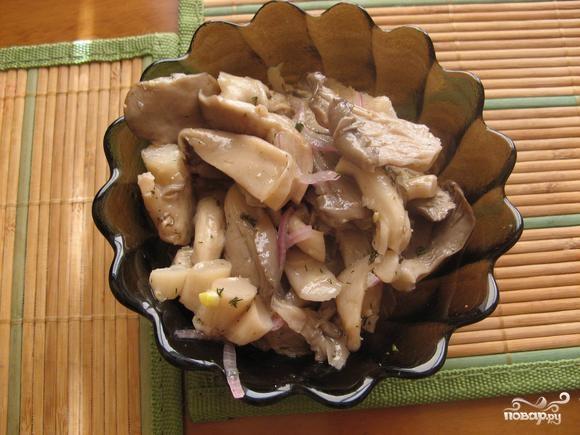 Маринованные грибы на зиму рецепты волнушки