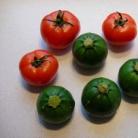 Рецепт Фаршированные помидоры и кабачки