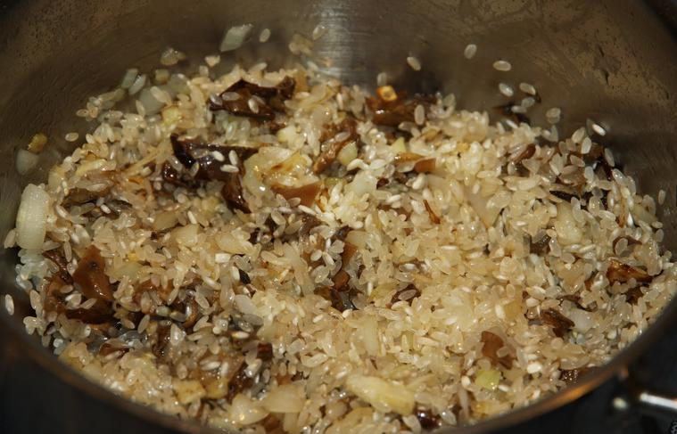Рецепт Ризотто с сушеными белыми грибами
