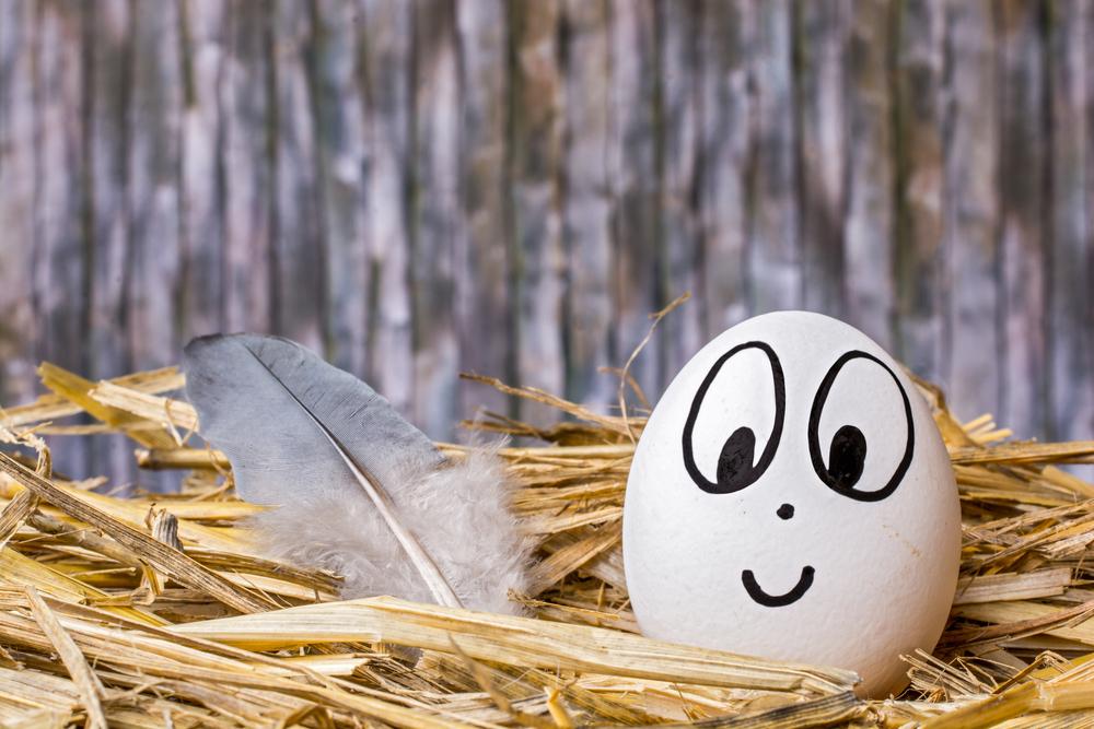 Разрисованное белое куриное яйцо