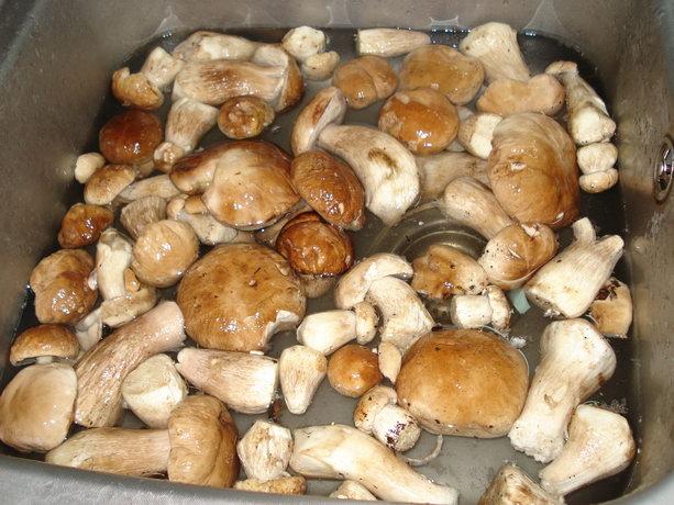 Рецепт Суп из белых грибов свежих