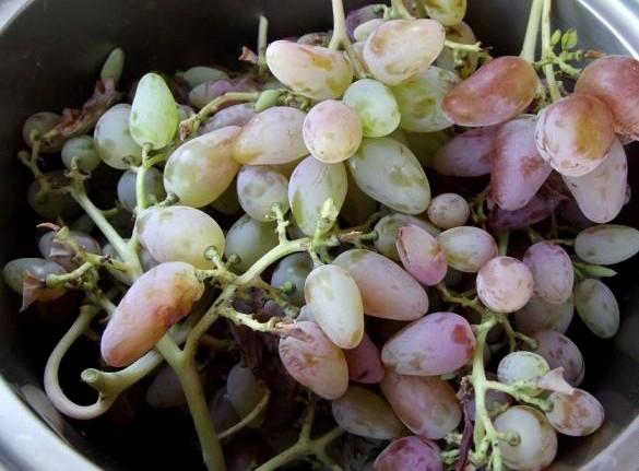 Рецепт Варенье из винограда с косточками