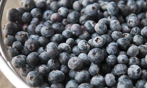 Рецепт Желе из ягод на зиму