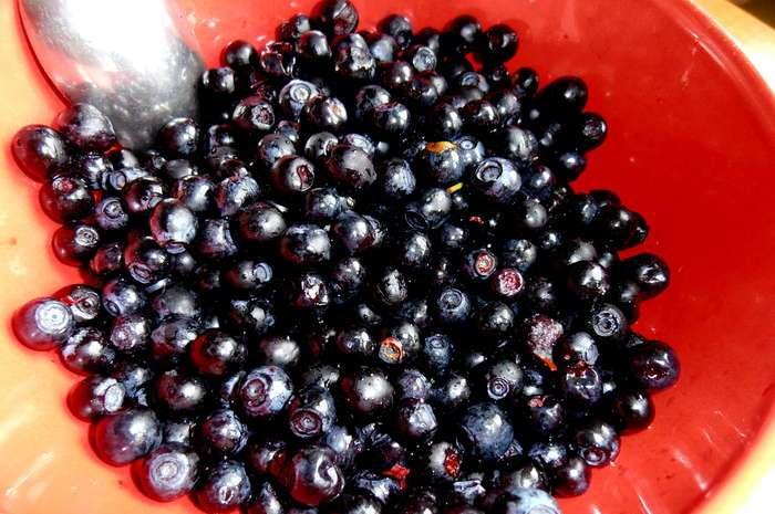 Рецепт Варенье из черники в аэрогриле