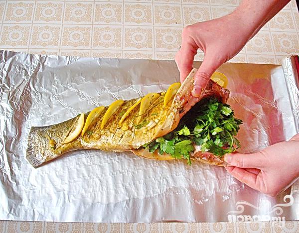 Запеченный толстолоб с лимоном и зеленью - фото шаг 3