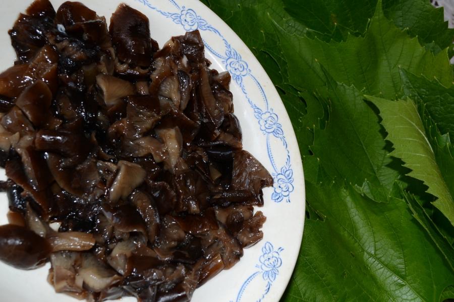 Рагу с листьями фаршированными курицей и опятами - фото шаг 2