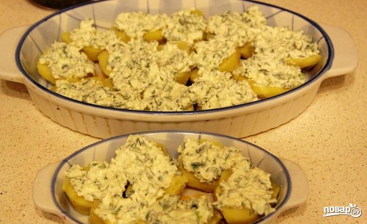 картошка по сыром в духовке рецепт с фото