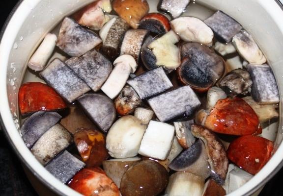 Рецепт Суп из свежих подосиновиков
