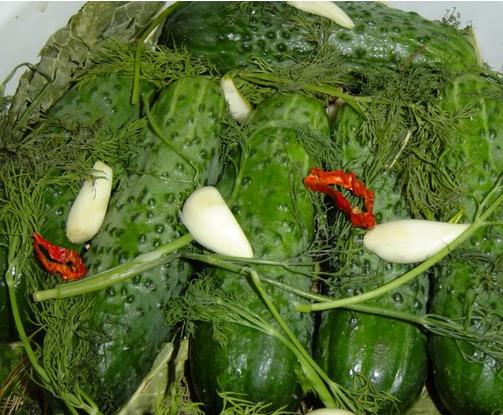Рецепт Малосольные огурцы быстрого приготовления в холодной воде