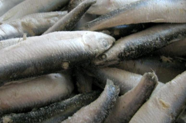Консервы из рыбы - фото шаг 1