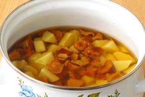 Суп грибной из лисичек - фото шаг 4