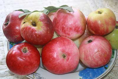 Рецепт Варенье из яблок без стерилизации