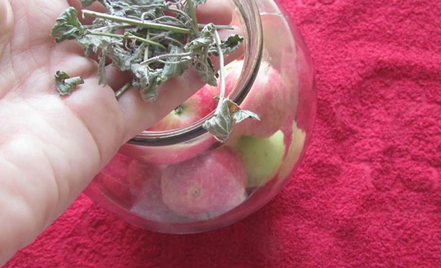 Яблоки консервированные целиком - фото шаг 4