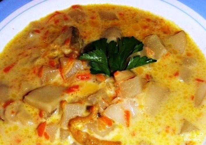 рецепт приготовления супа из свежих грибов рецепт
