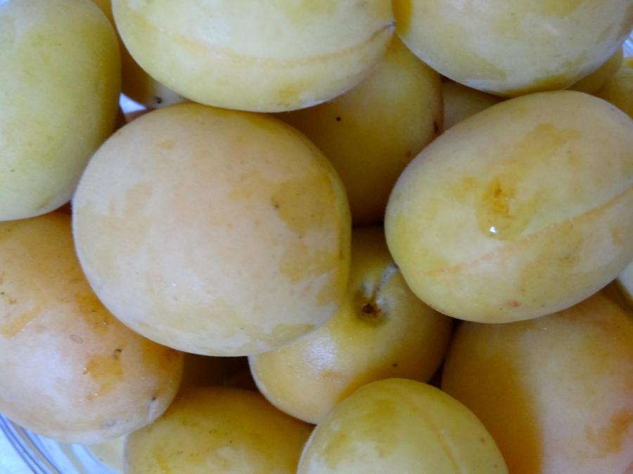 Рецепт Варенье из абрикосов без косточек
