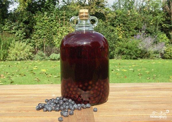 Рецепт Вино из терна