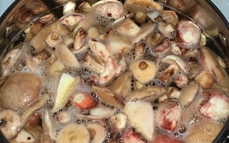 Рецепт Маринованные маслята на зиму