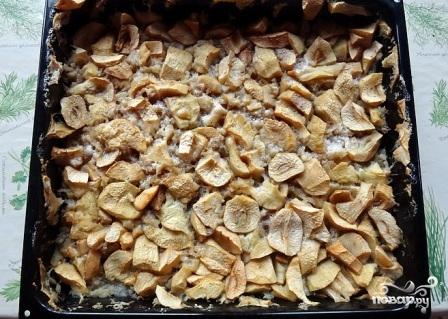 Мармелад натуральный яблочный - фото шаг 3