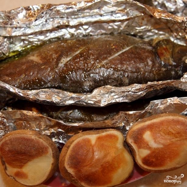 рыба линь рецепты приготовления в духовке