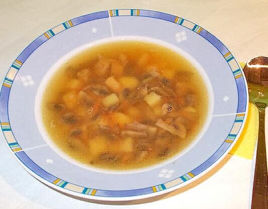 Суп грибной с мясом - фото шаг 8