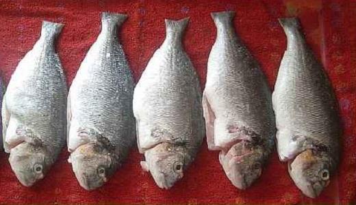 Рыба на решетке в фольге - фото шаг 1