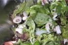 Летний салат из кальмаров