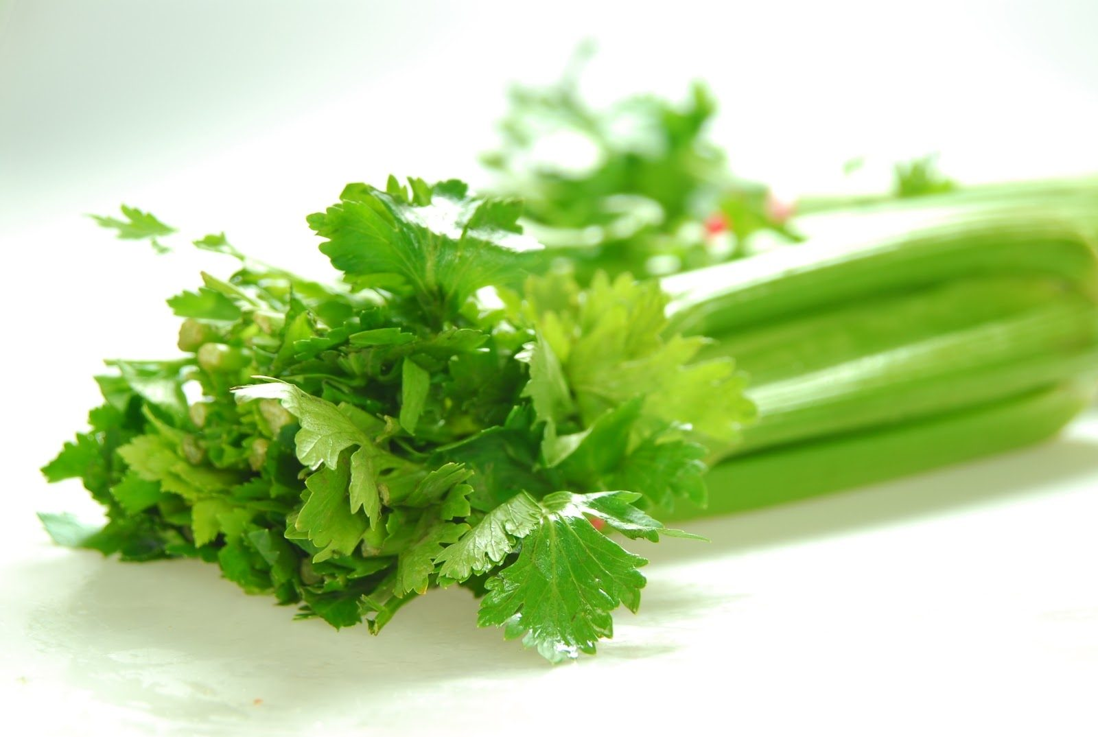 Рецепт Салат из сельдерея для похудения