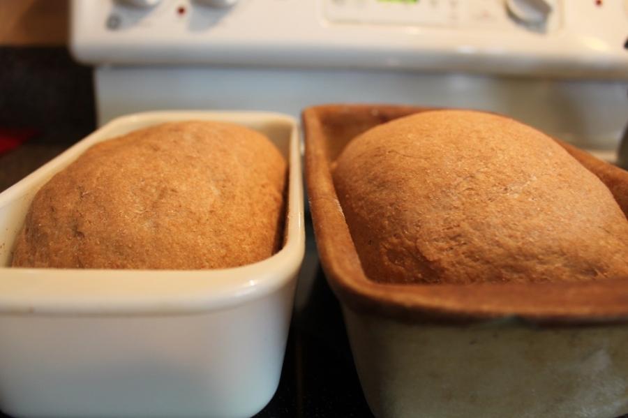 Хлеб из цельной пшеницы - фото шаг 3