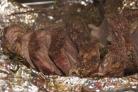 Запеченная телятина в фольге на мангале