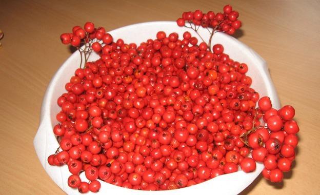 Рецепт Варенье из садовой рябины