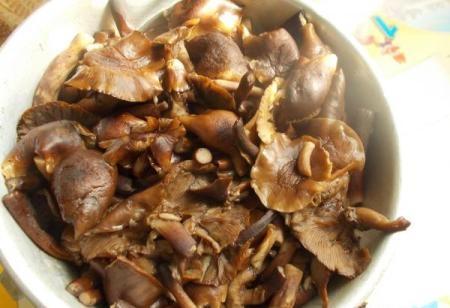 Икра из грибов на зиму - фото шаг 1