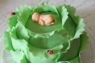 Торт Капуста с младенцем