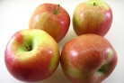 Пирог с яблоками Шарлотка