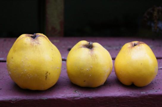 Рецепт Варенье из айвы в духовке