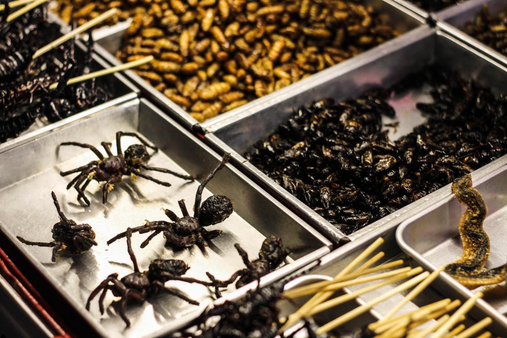 Хрустящие тарантулы (камбоджийский деликатес)