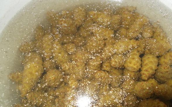 Варенье из кедровых шишек - фото шаг 1