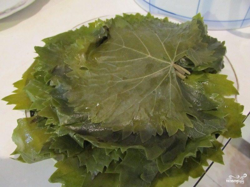 Рецепт Консервированные листья винограда