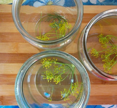 Рецепт Маринованные кабачки на зиму